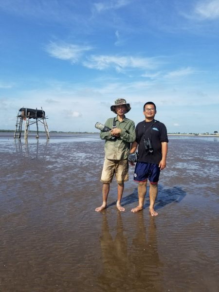Spoon-billed Sandpiper field survey in Go Cong coast